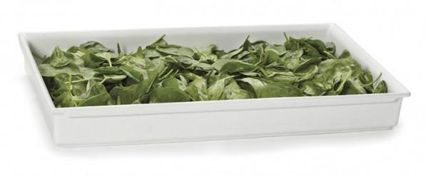 Bugambilia® Fit Perfect™ weiß 10,8 L - Volle Größe - 51 x 31