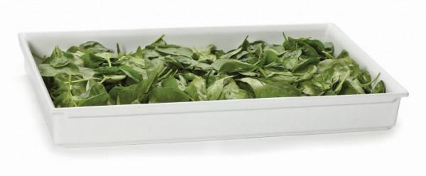 Bugambilia® Fit Perfect™ weiß 9,5 L - Volle Größe - 51 x 31